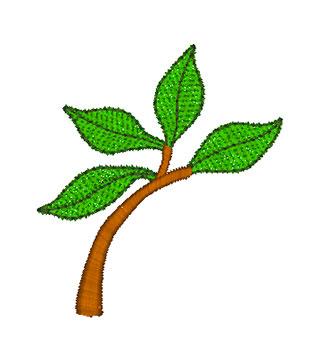 Roll-Saying-Branch-1.jpg