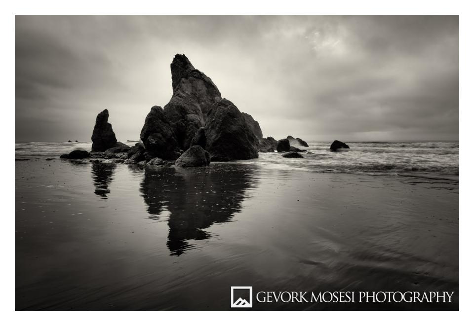 gevork_mosesi_photography_northwest_washington_olympic_national_park_beach-1.jpg
