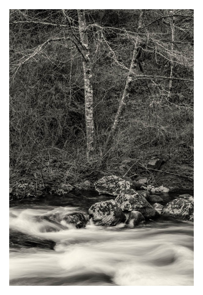 Gevork_Mosesi_oregon_columbia_gorge_waterfall_gorton_creek.jpg