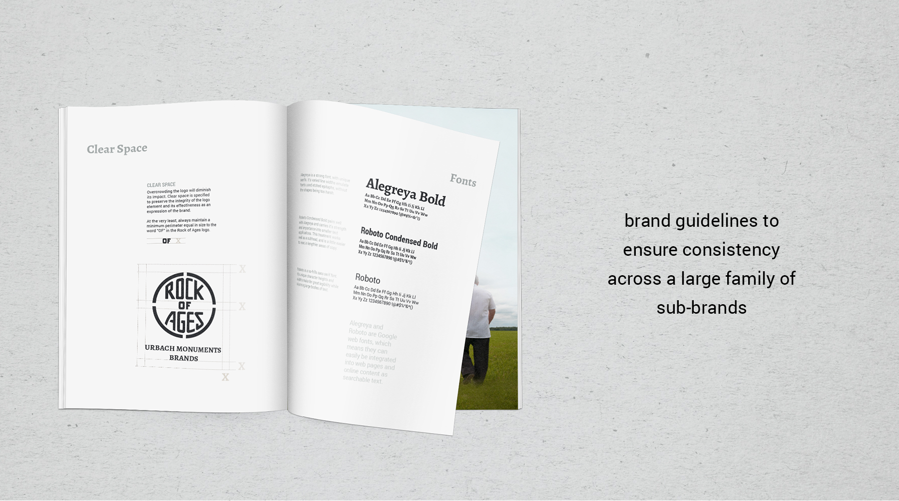 Brand guidelines to ensure consistency across a large family of sub-brands.