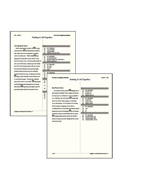 Grammar sample section passages-03.png