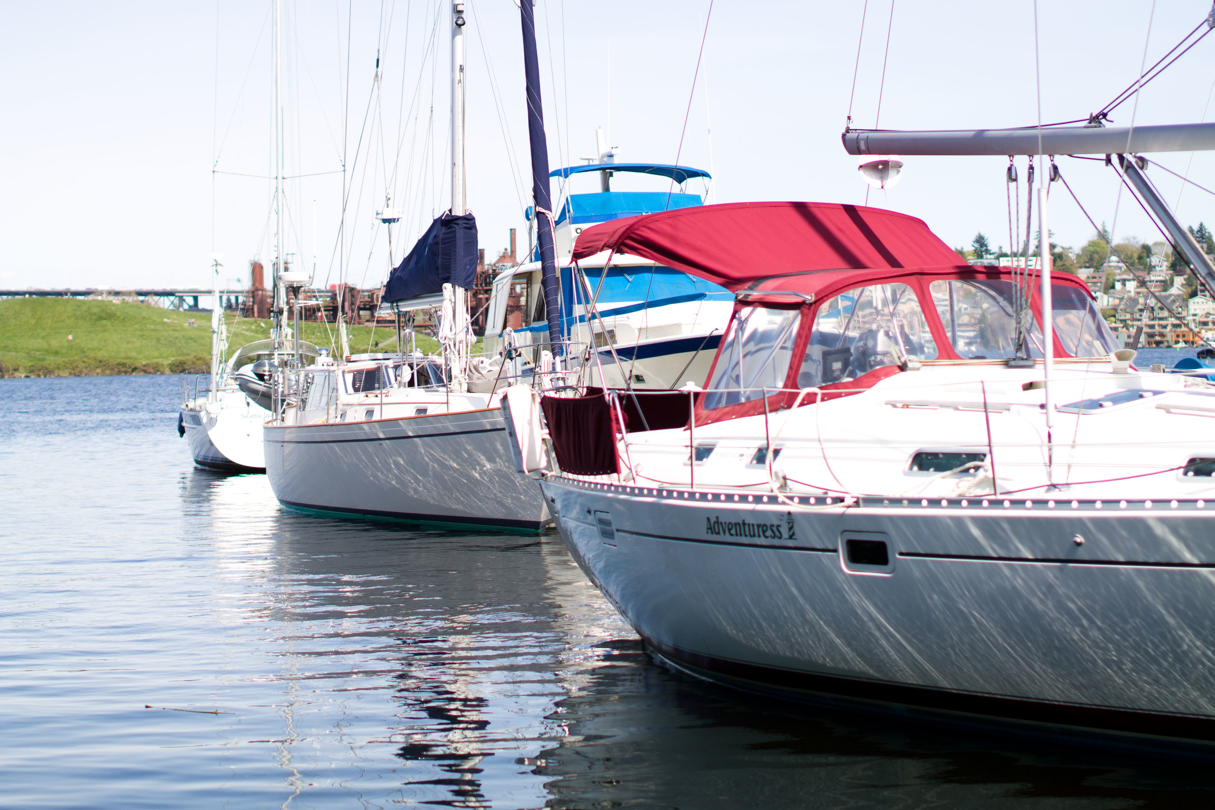 sail boats