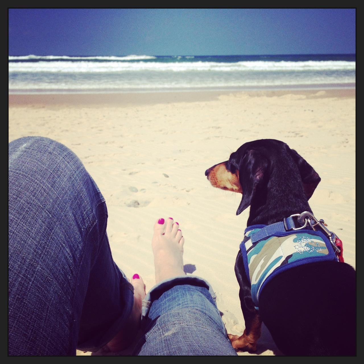 Pippy-beach_insta.JPG