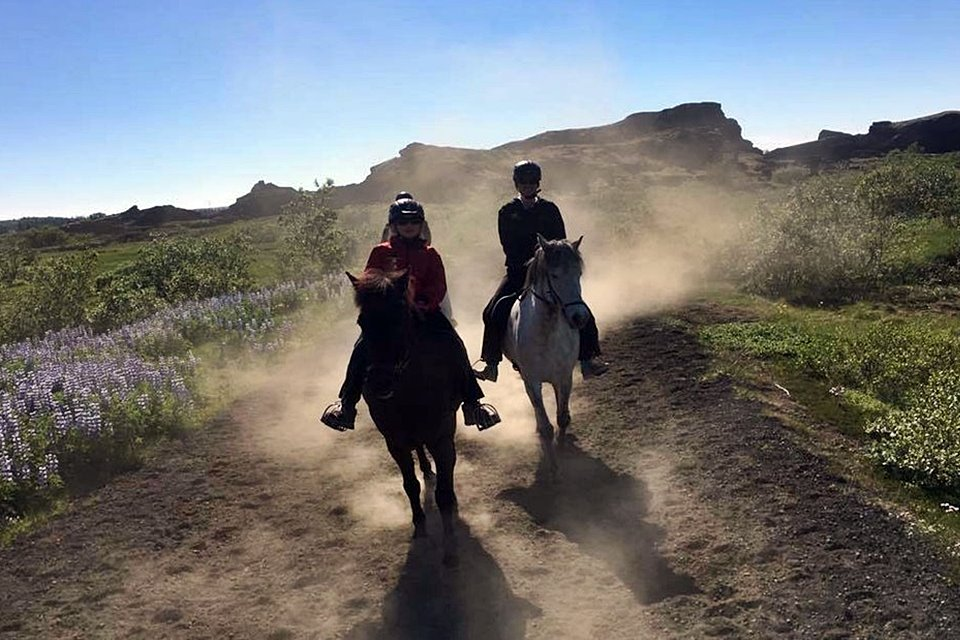 Morning Horseback Riding Tour - Mountains, Lakes And Lava Formations - Creative Iceland 03.jpg