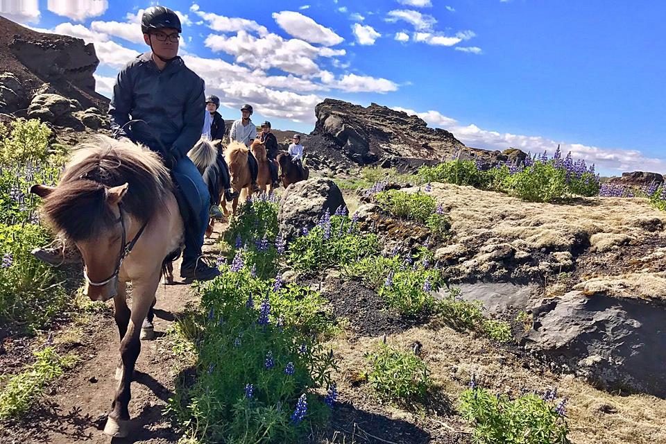 Morning Horseback Riding Tour - Mountains, Lakes And Lava Formations - Creative Iceland 09.jpg
