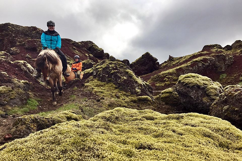Morning Horseback Riding Tour - Mountains, Lakes And Lava Formations - Creative Iceland 08.jpg