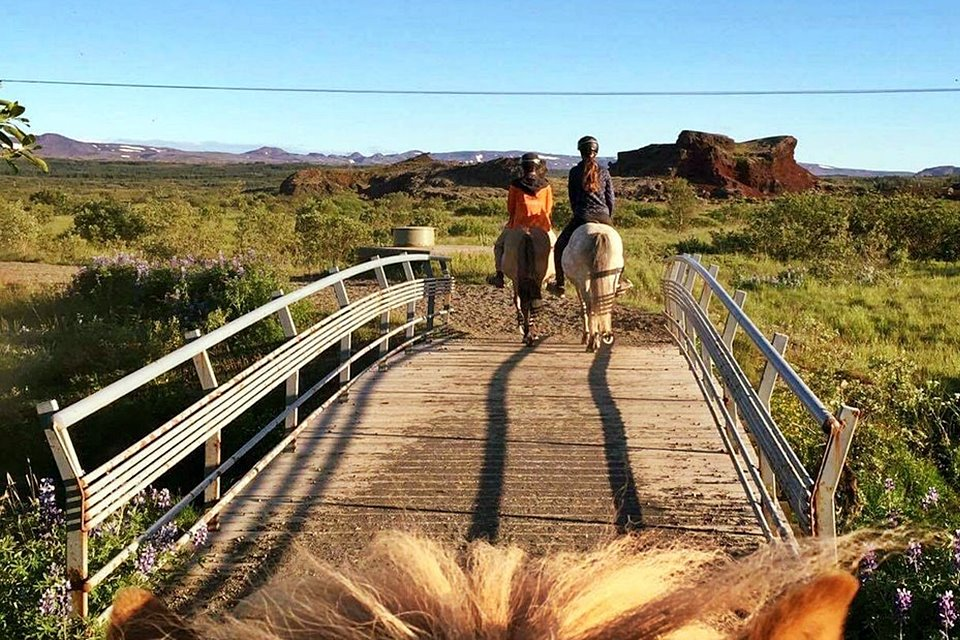 Morning Horseback Riding Tour - Mountains, Lakes And Lava Formations - Creative Iceland 07.jpg