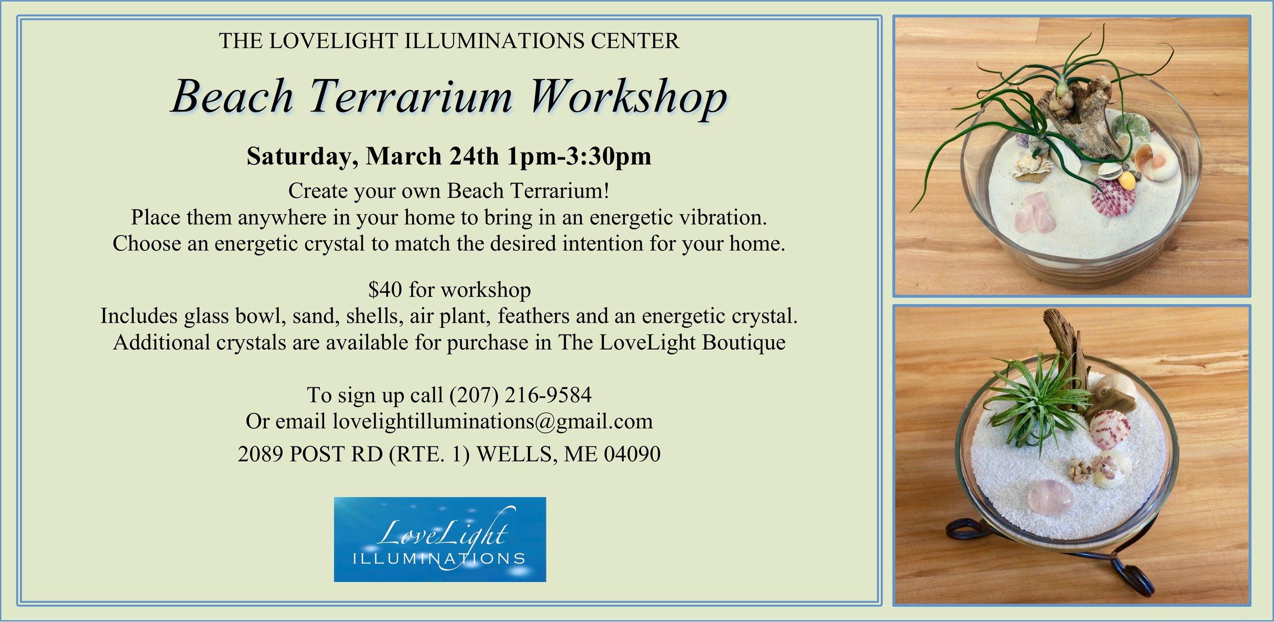 Terrarium Workshop 2.jpg