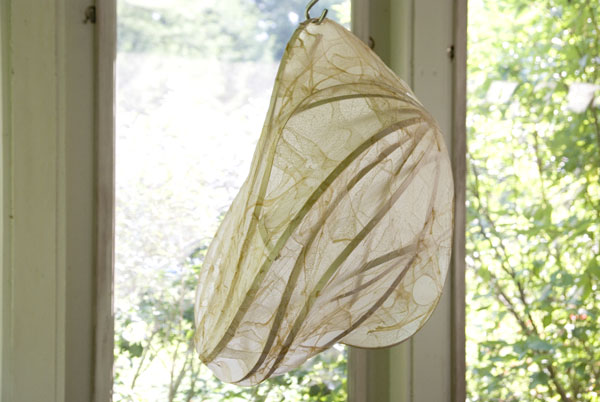 bag-of-wind-for-web.jpg