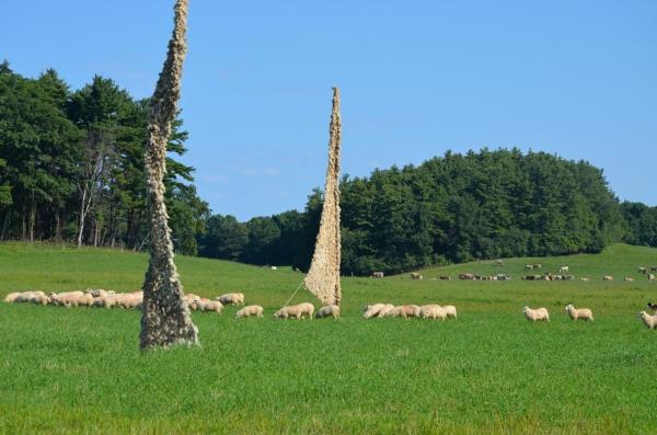 shelburne farms_046nancy winship mi.JPG