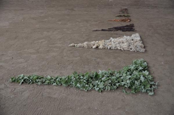 shelburne farms_017nancy winship mi_01.JPG