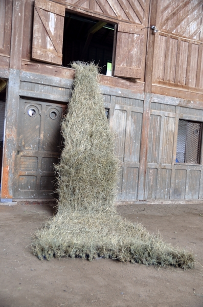 This hay sculpture was made to learn about bringing the field up off the ground and sailing away