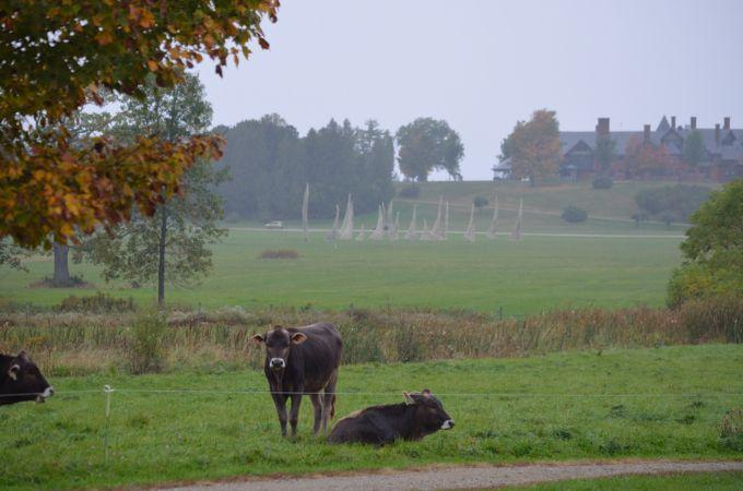 shelburne farms_044nancy winship mi.JPG