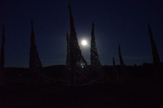 Windscape moon_1nancy winship mi_03.JPG