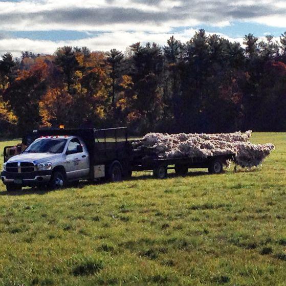 shelburne farms_020nancy winship mi_02.JPG