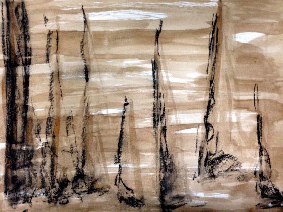 brown sails