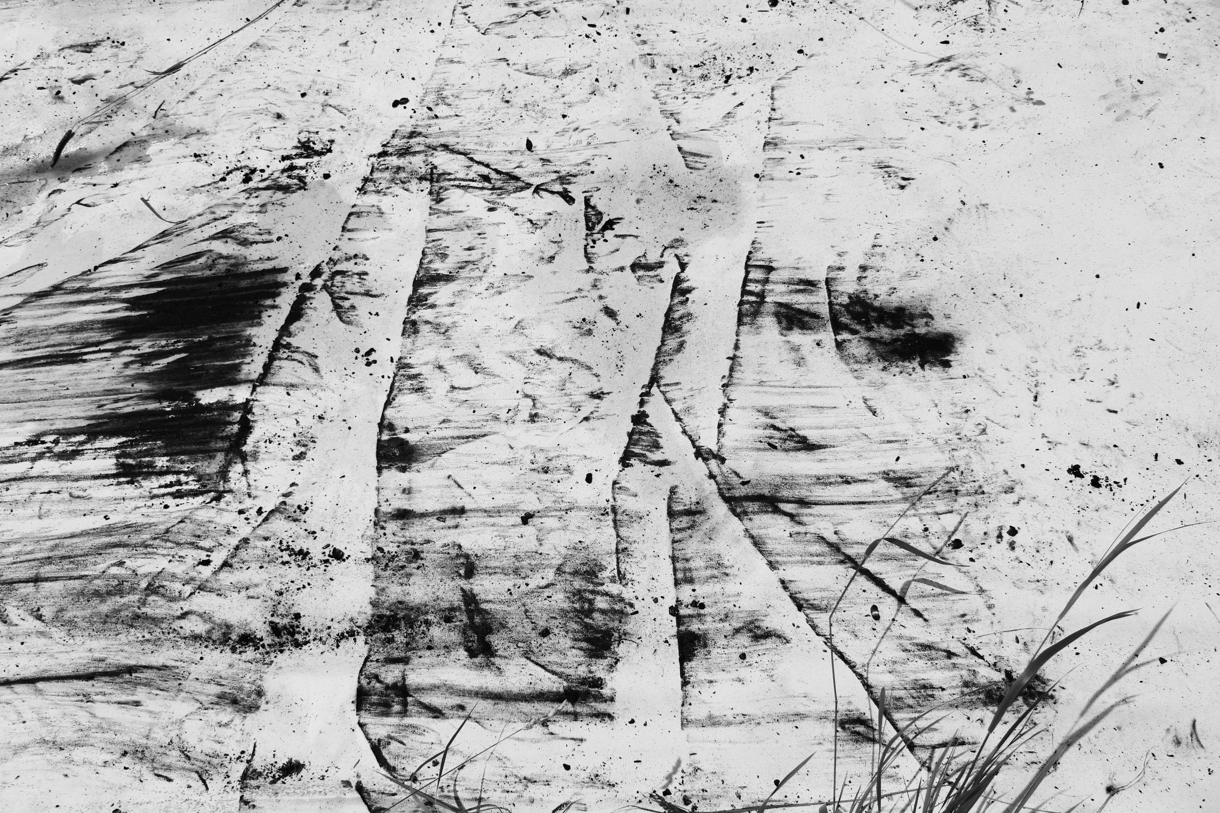 emily actual drawing 3 (1).jpg