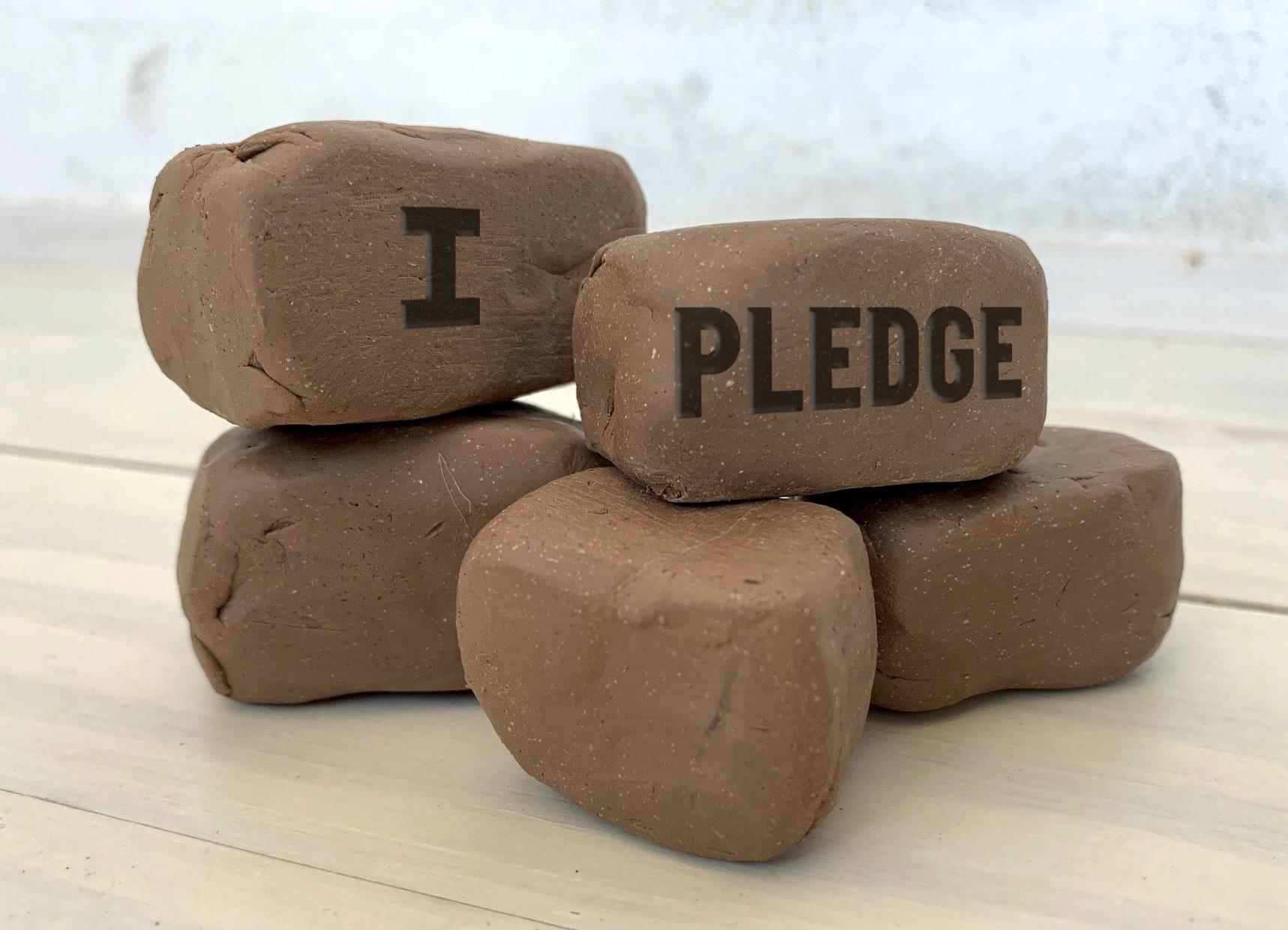 I-Pledge (1).jpg