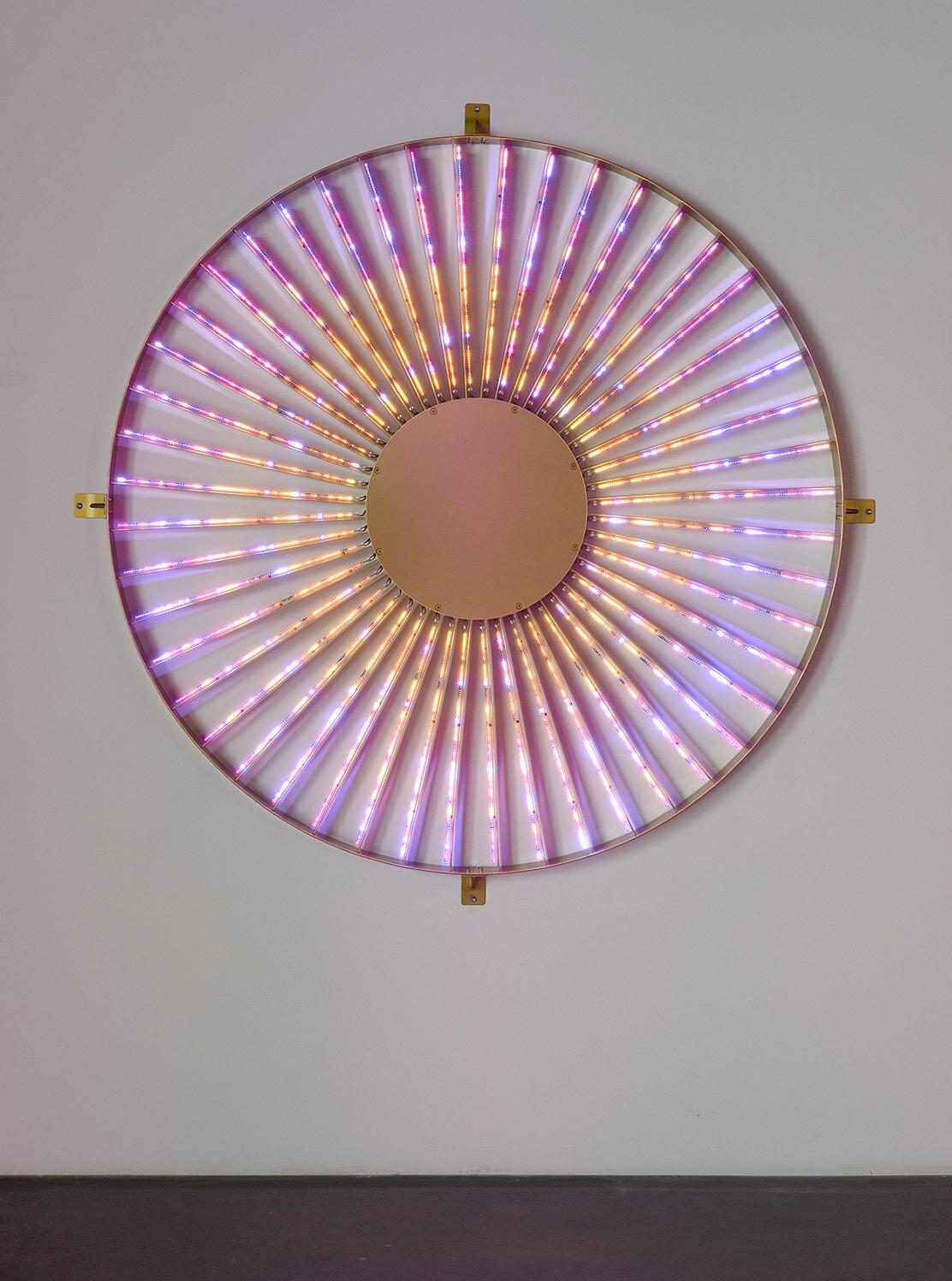 Radiant Wheel, 2016