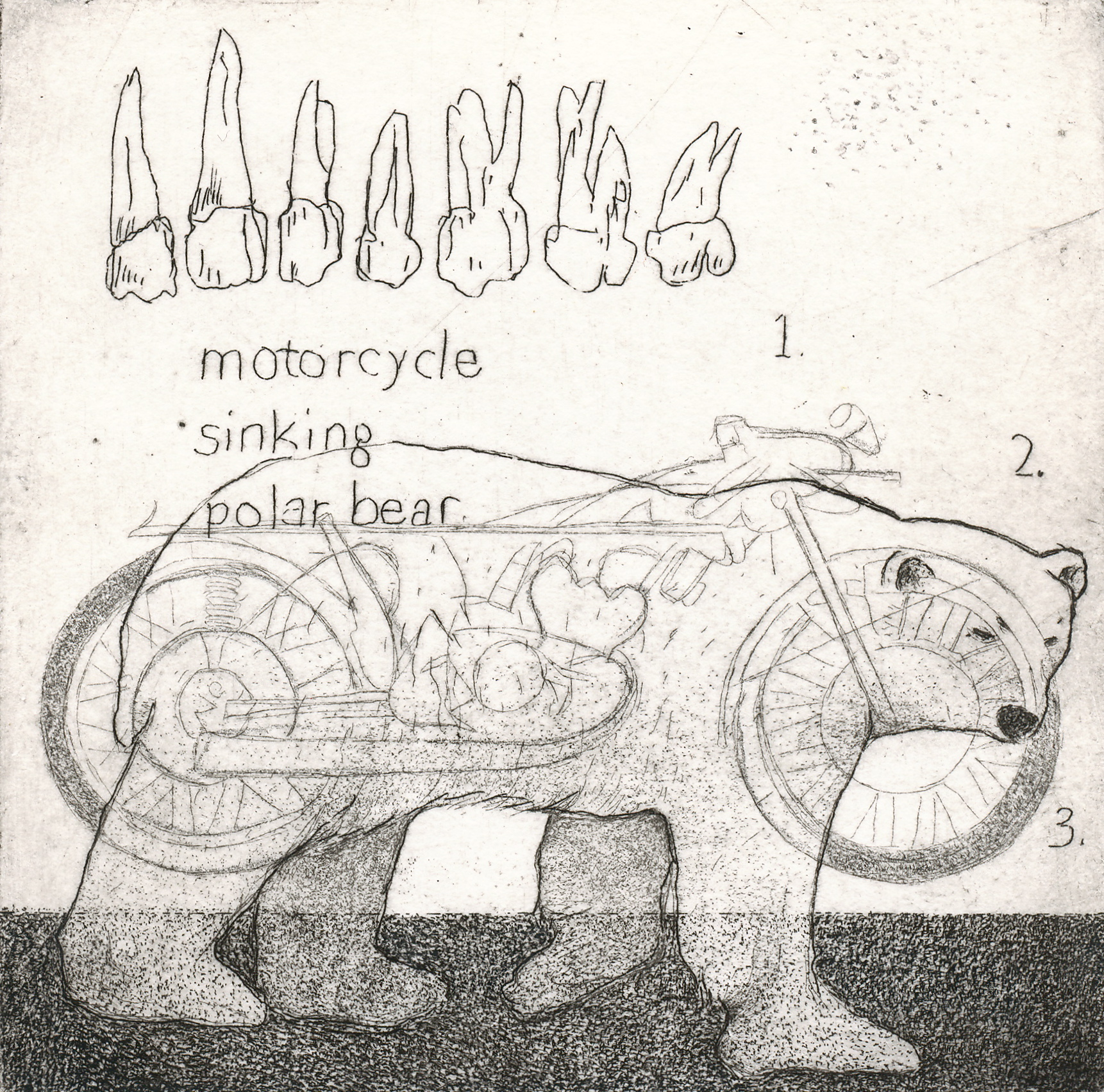 Motorcycle, Sinking, Polar Bear