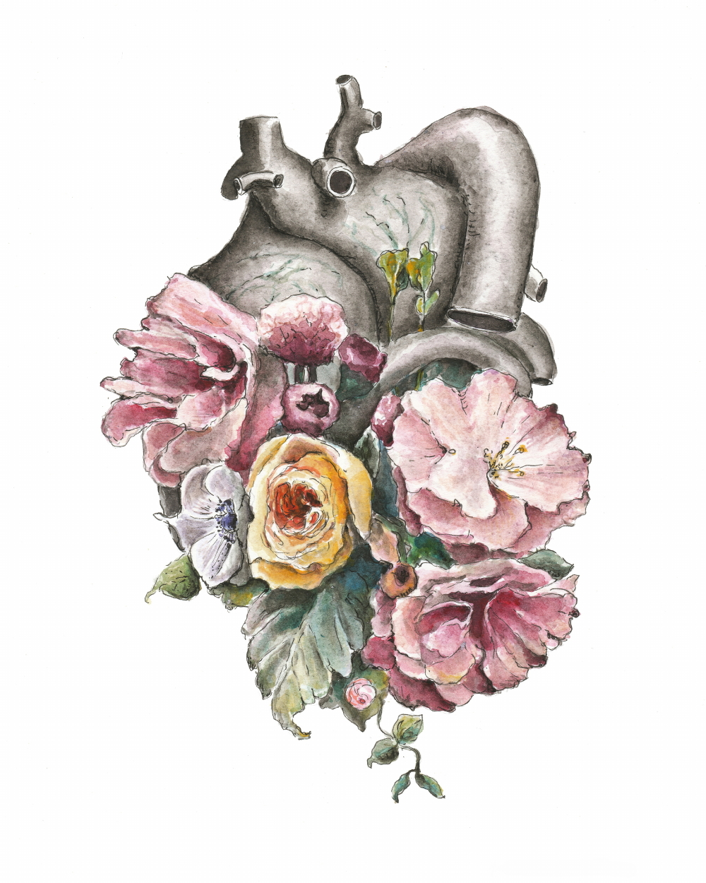 Floral Anatomy Heart (ITEM NO: 011)  Print Size: 8x10 inches  $12.50 Wholesale at 50% off  $25 RRP