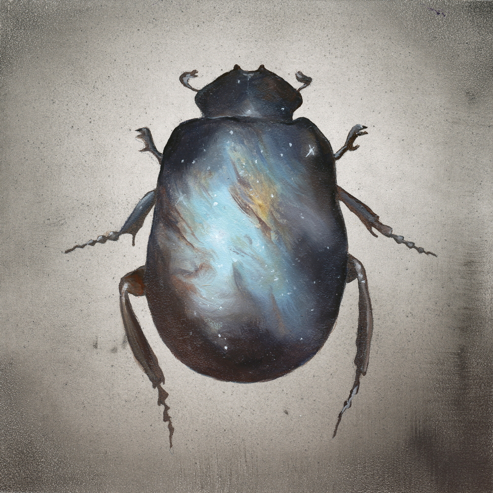 Scarab (ITEM NO: 004)  Print Size:8x8 inches  $12.50 Wholesale at 50% off  $25 RRP