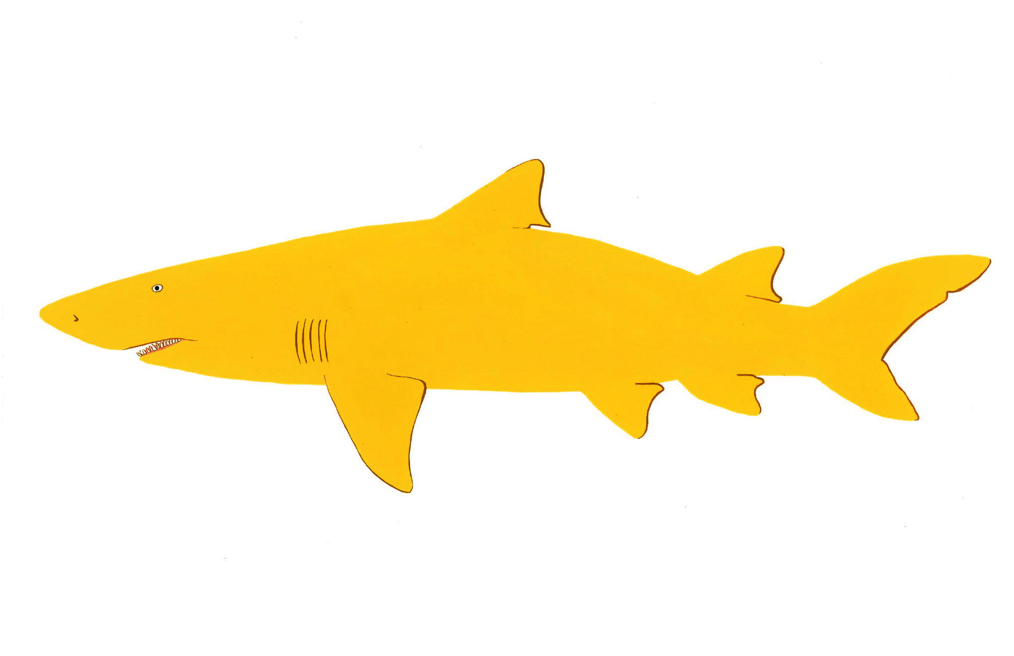 Lemon Shark2014. Gouache.