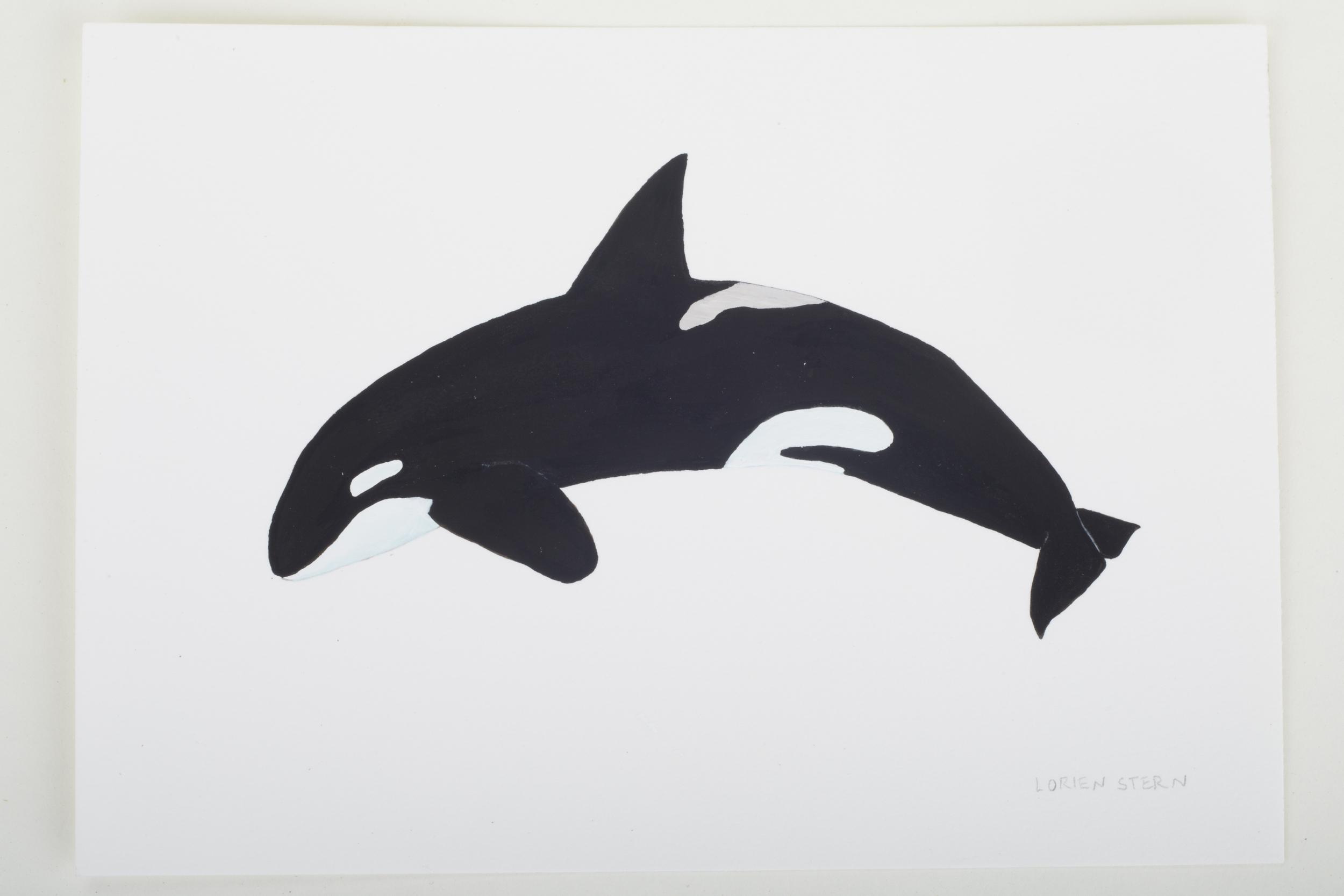 "Orca 2015- 5"" x 7"". Gouache on 100% cotton acid free Stonehenge Paper"
