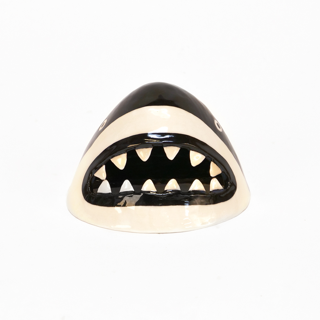Small Black and White Shark 1.jpg