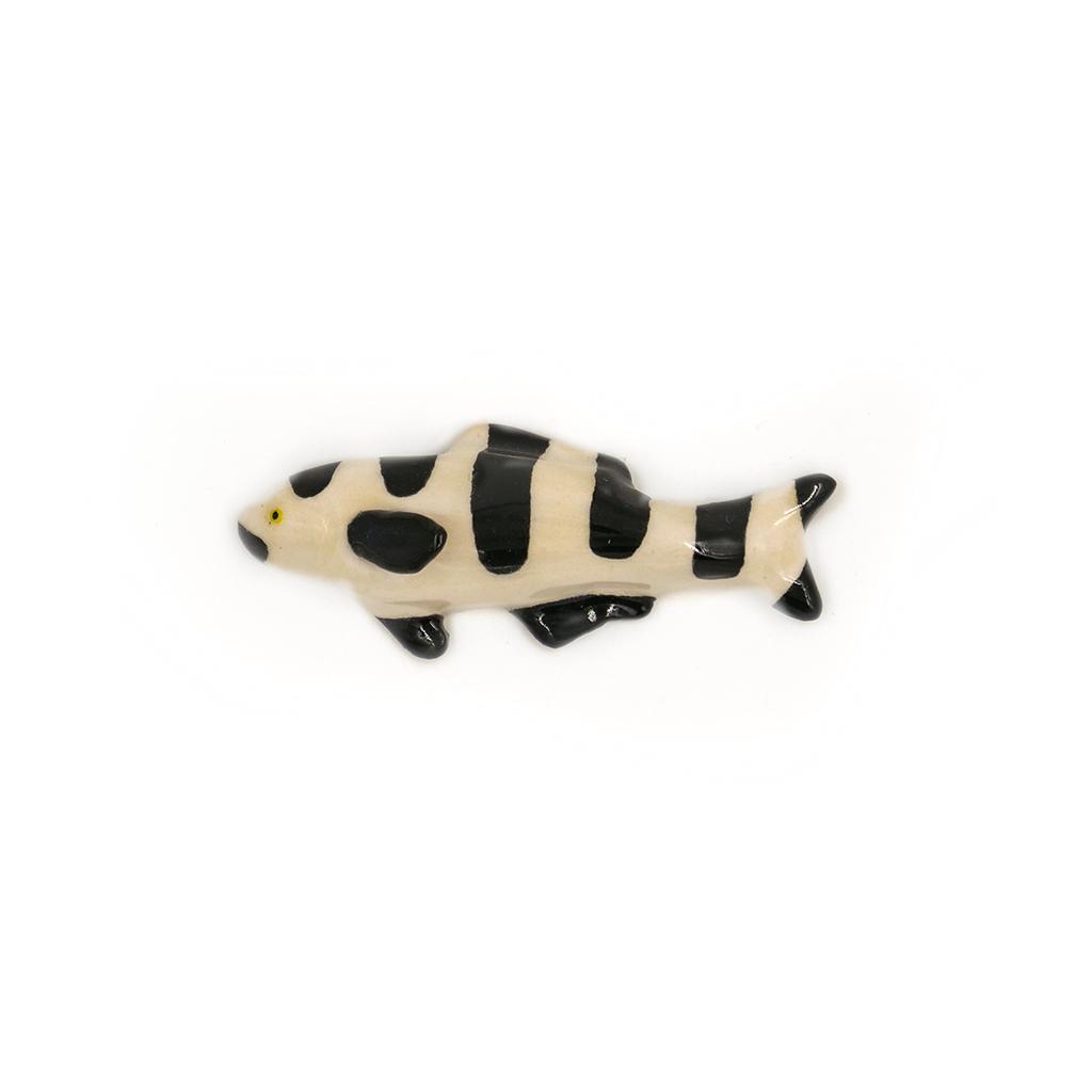 Tiny B&W Fish.jpg