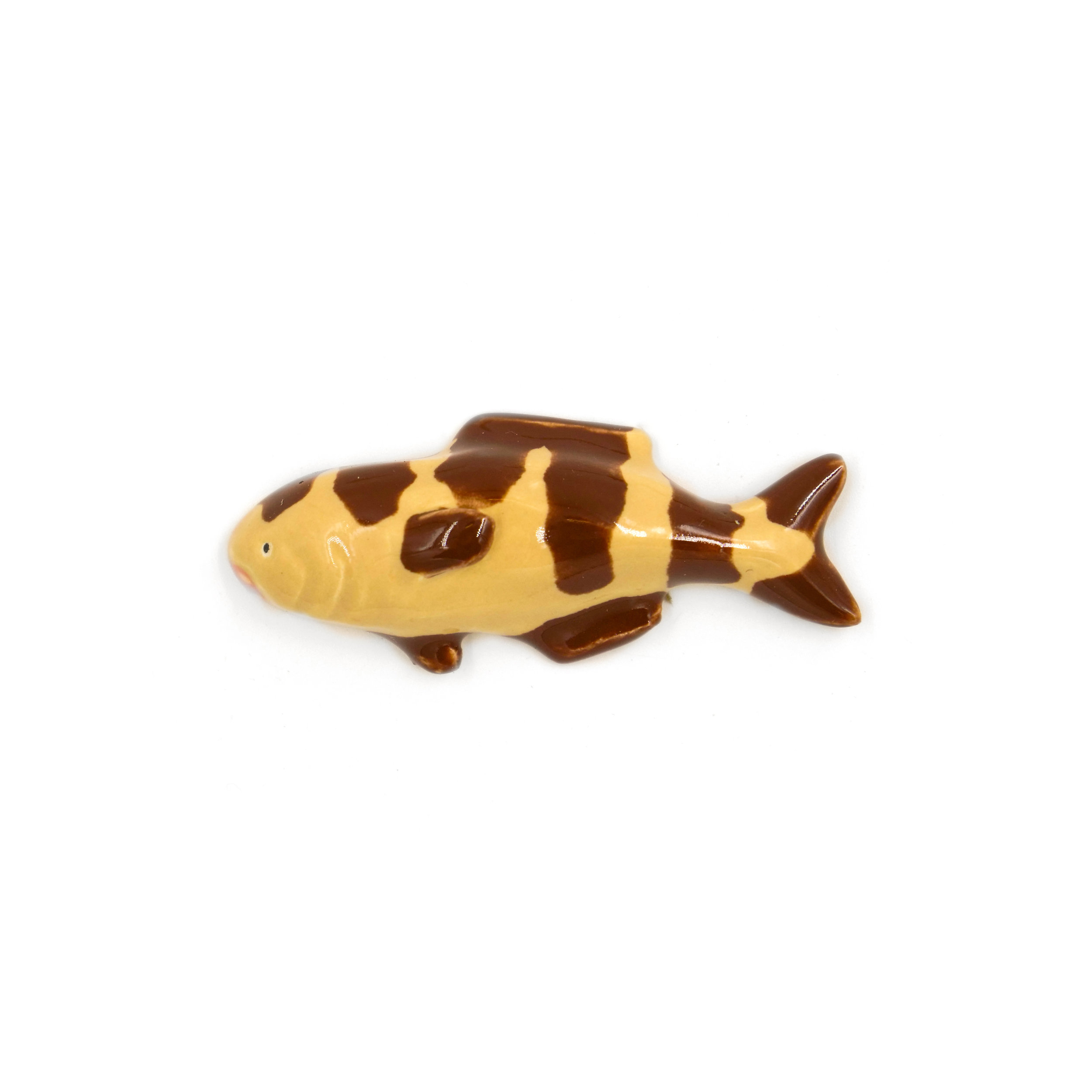 Tiny Brown Striped Fish.jpg