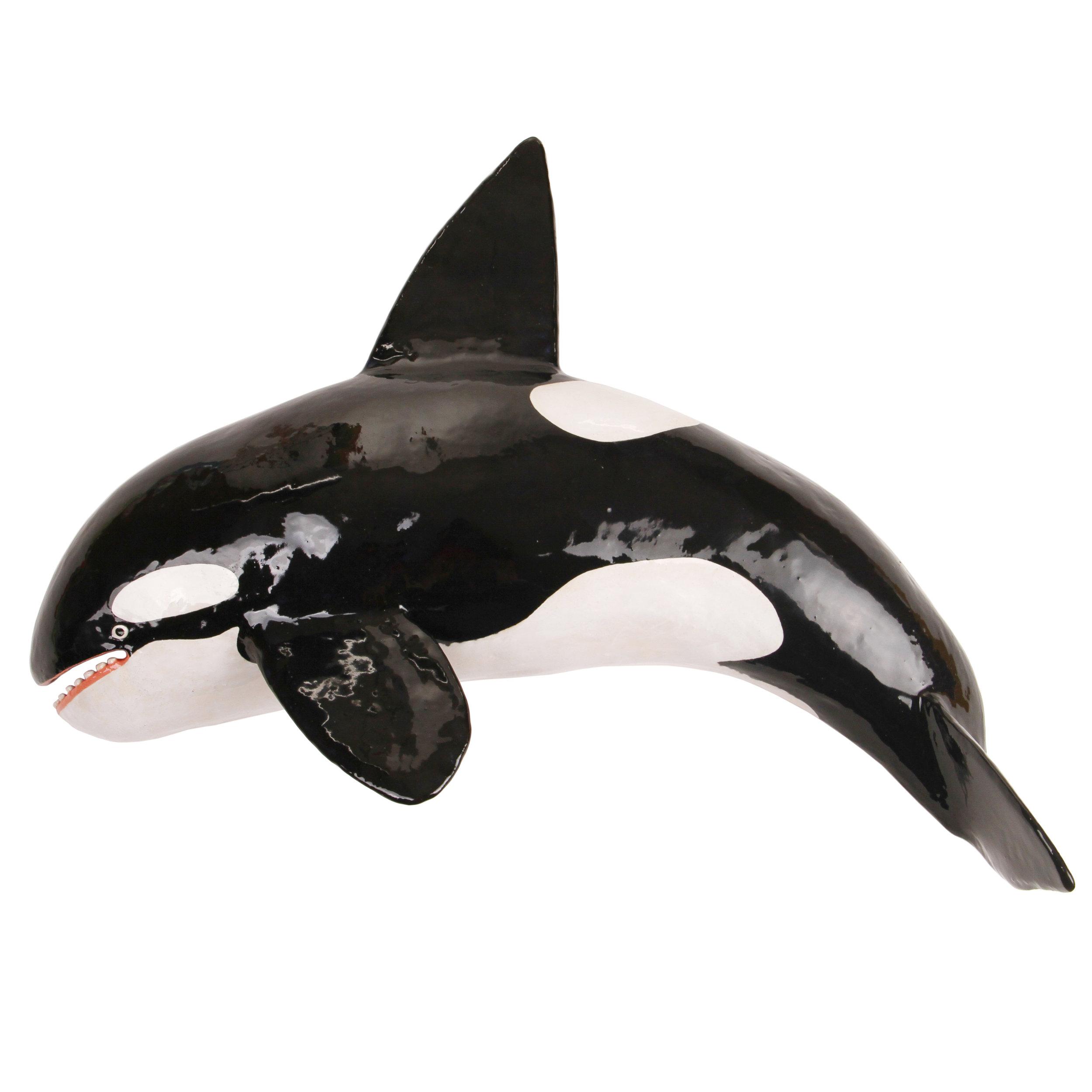 22_orca.jpg