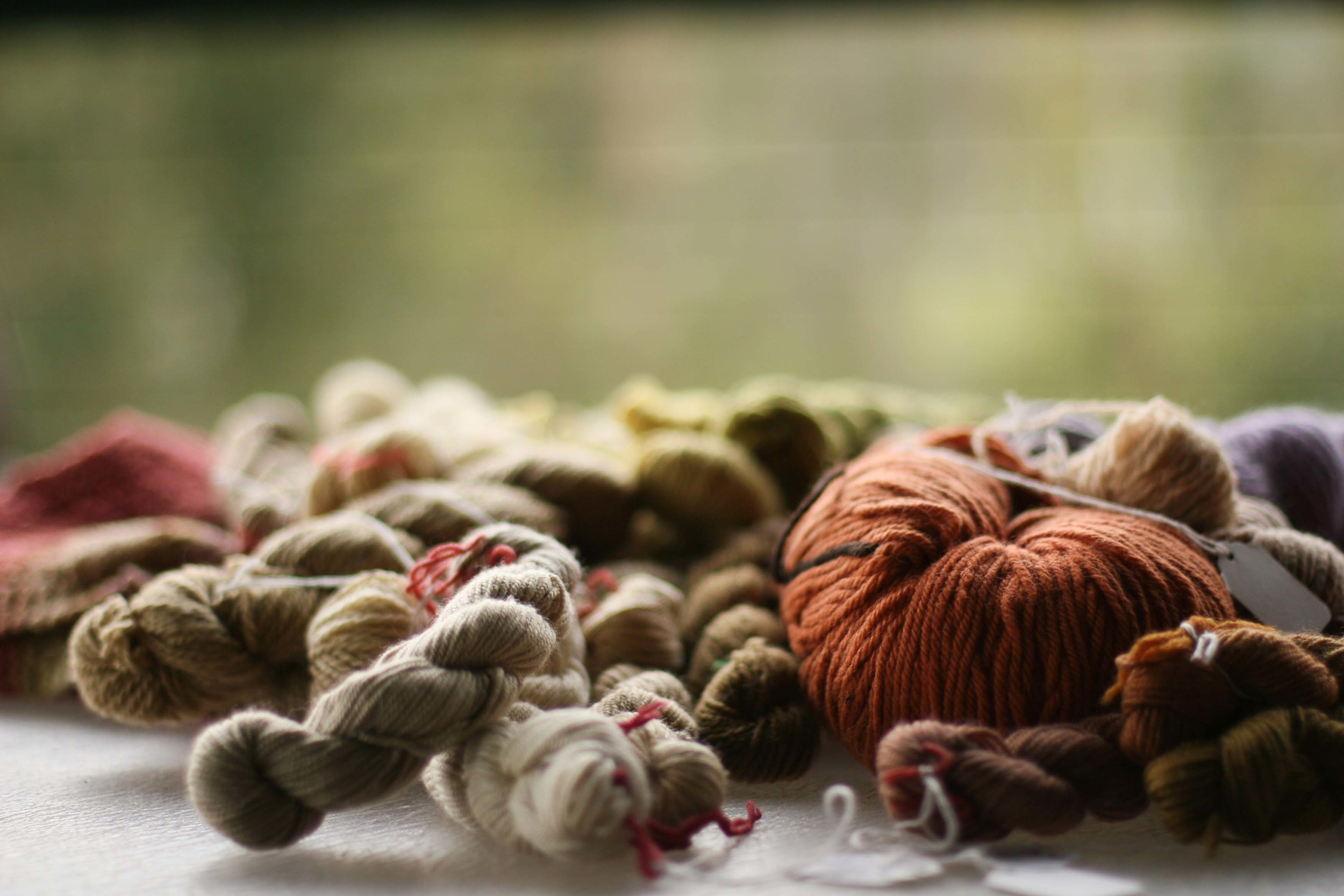 Natural Dyeing with Julia Billings