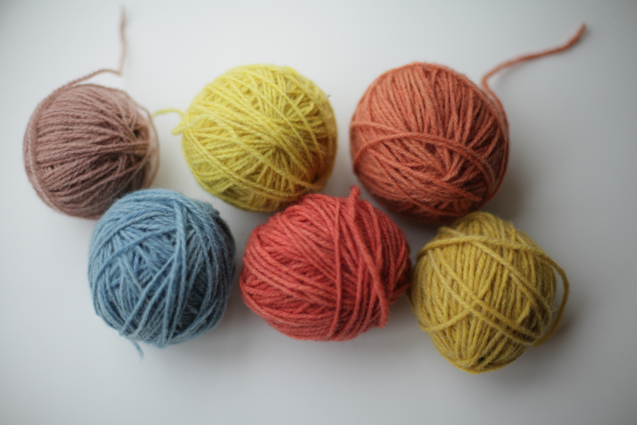 Dyed with Goat Willow, Woad, Dyers Camomile, Madder, Madder again and more Dyers Camomile.