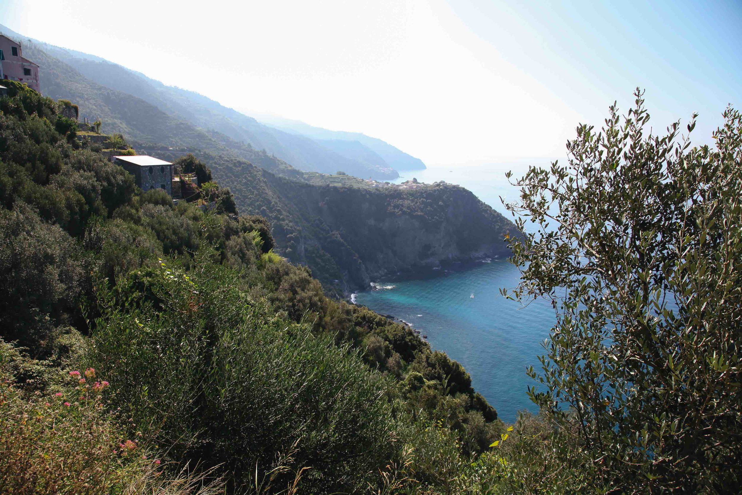 One of those times when the camera was put away on purpose. This photo was all I took when walking from Vernazza to Corniglia in the Cinque Terre.