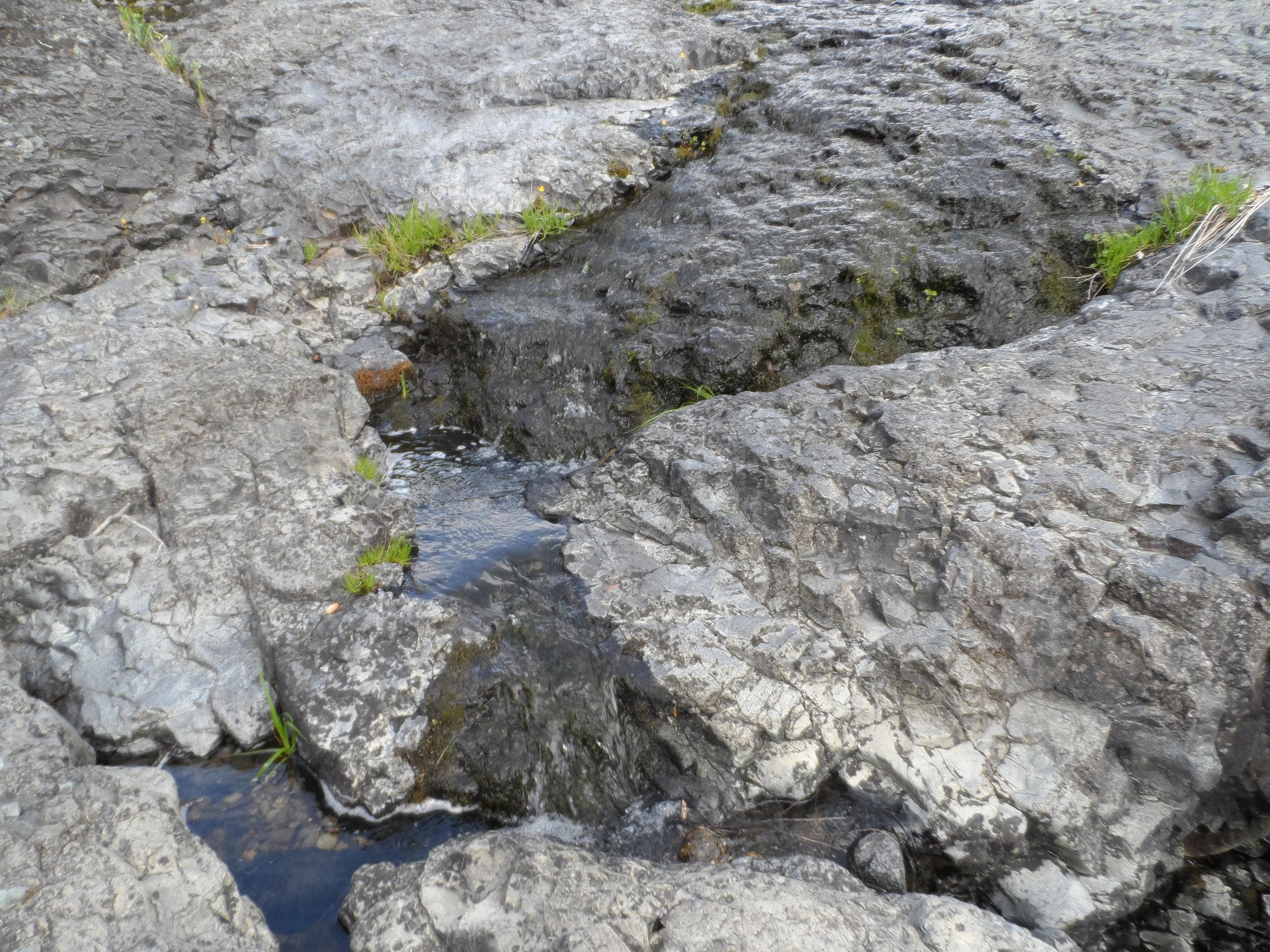 a natural stream.JPG