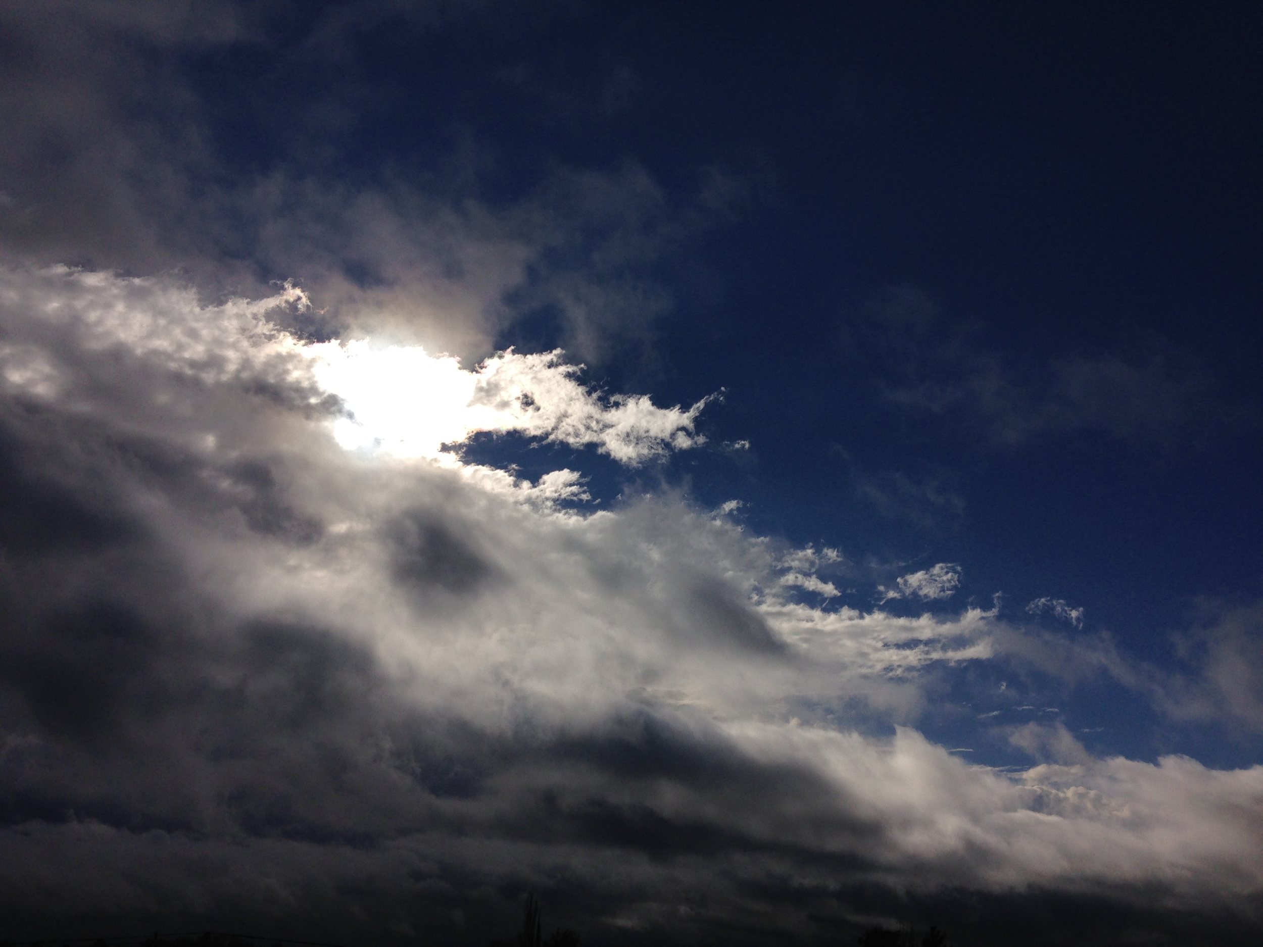 Revealing Light.JPG