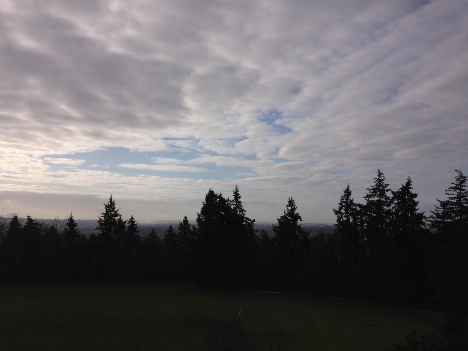 Mt Angel Abbey View.JPG