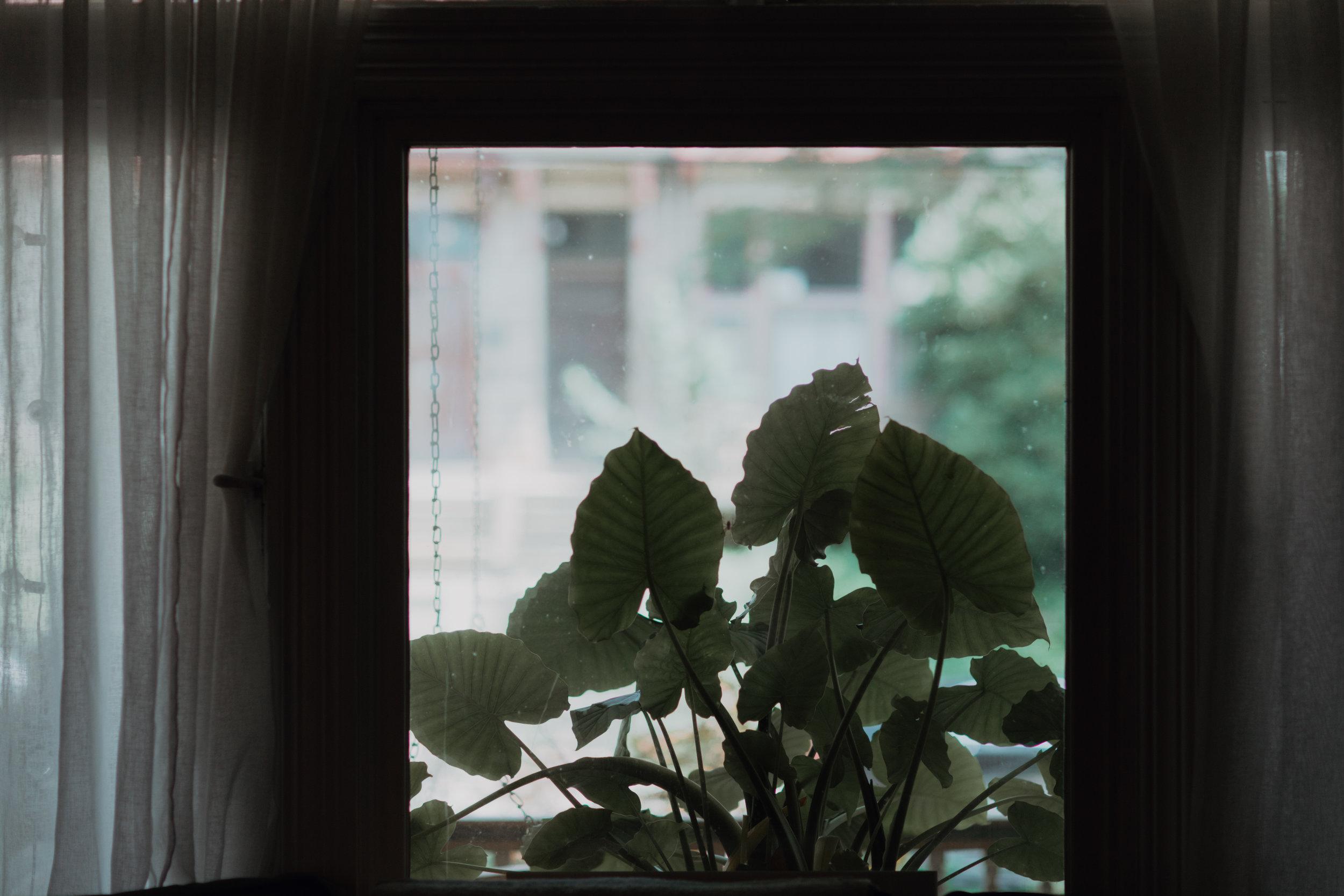 nl_2-3.jpg