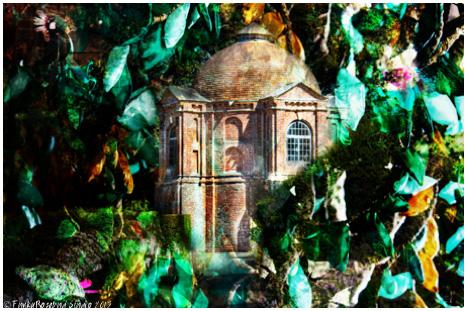 vyne tree house.jpg