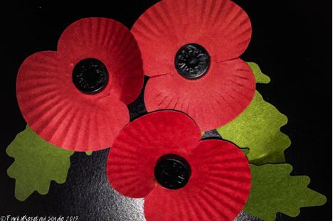 november poppies.jpg