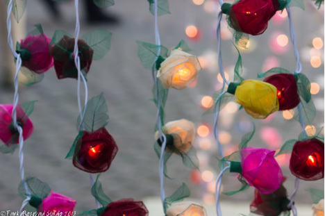 salisbury lights.jpg