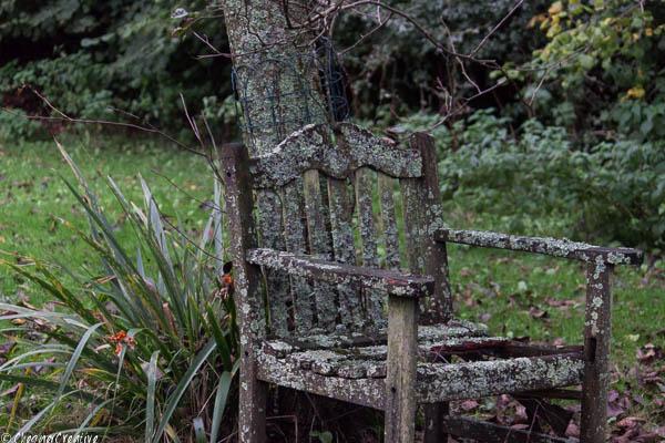 garden seat.jpg