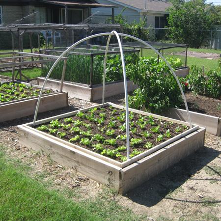 Garden-PVC-Hoop.jpg