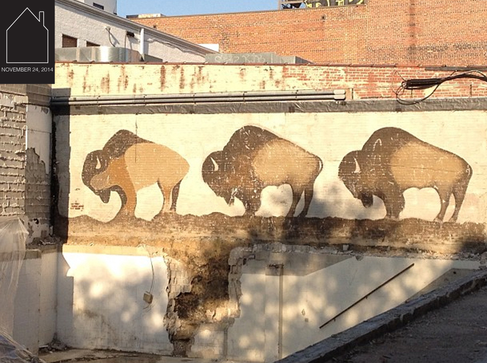 buffalo mural via  Folk Fibers pinterest