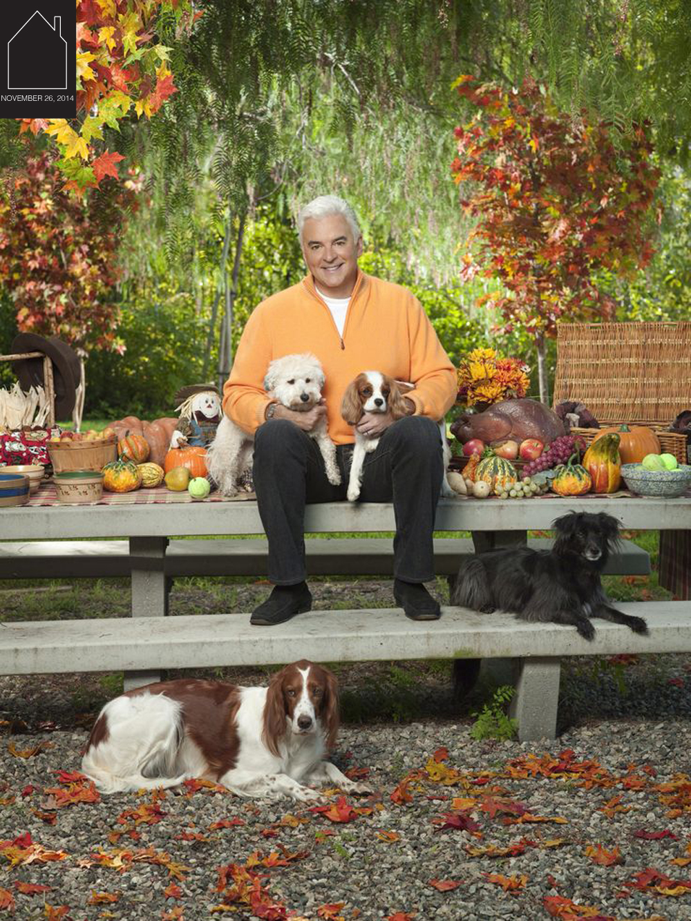 Purina National Dog Show  - a Thanksgiving holiday must in my family