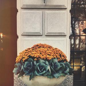 october 1 | 10.1.2014