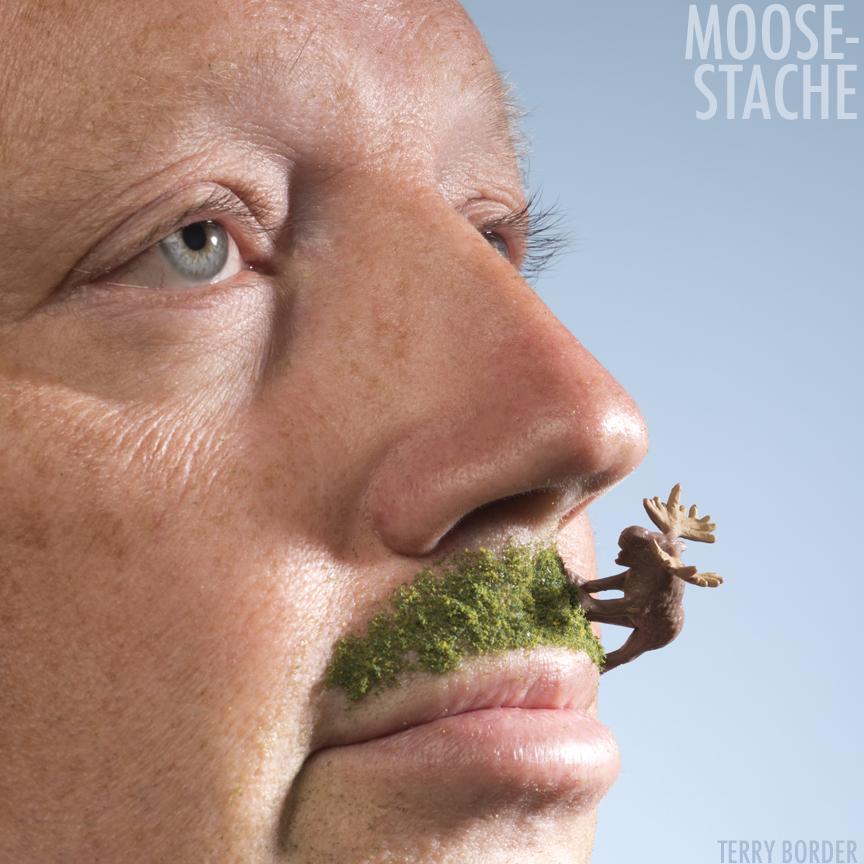 moose stache.jpg