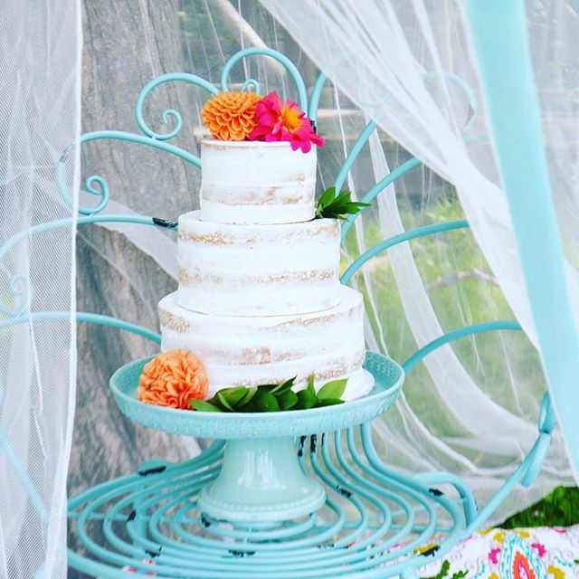 A tulle tent for an afternoon of whimsy.  #weddingcake #nakedcake #tent #glamping #bohowedding #garden #picnic #gardenfurniture