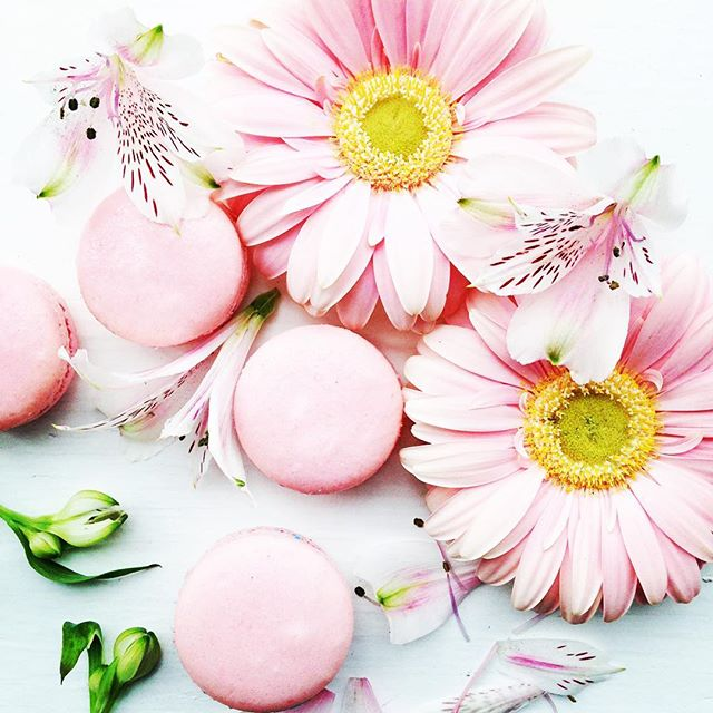 Pretty in Pink! French Macarons and Gerbera daisies. #frenchmacarons #macarons #pink #gerbera #daisies #yyzeats #designer #foodphotography #bakesaletoronto #agmacarons #prettyinpink🎀